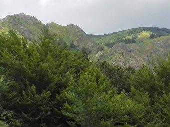 a8 foto 4 vista monti